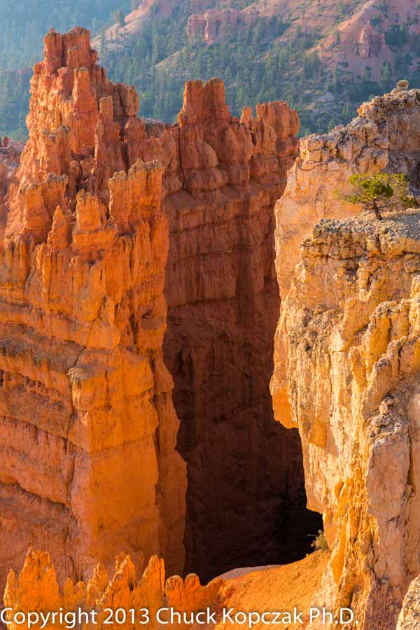 2013-07-09 Bryce Canyon Amphitheater AM 14-900px.jpg