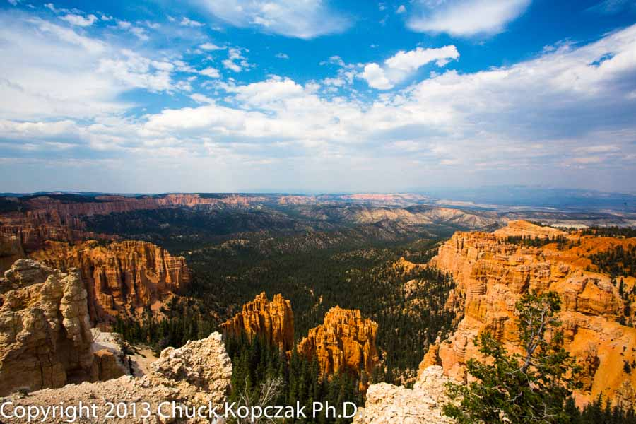 2013-07-10 Bryce Canyon Rainbow Point-900px.jpg