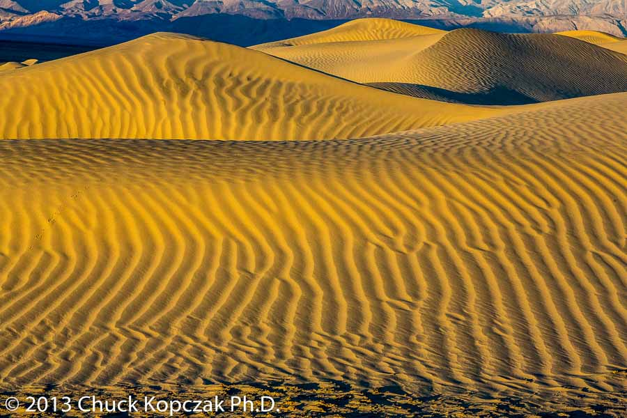 Sand dunes near Stovepipe Wells, Death Valley National Park