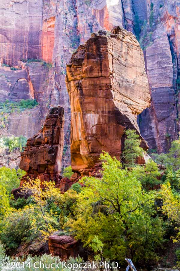 The Pulpit, the Temple of Sinawava, Zion National Park