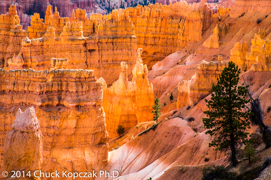 Thor's Hammer (center) stands amid the spectacular geology of the main amphitheater in Bryce Canyon National Park.
