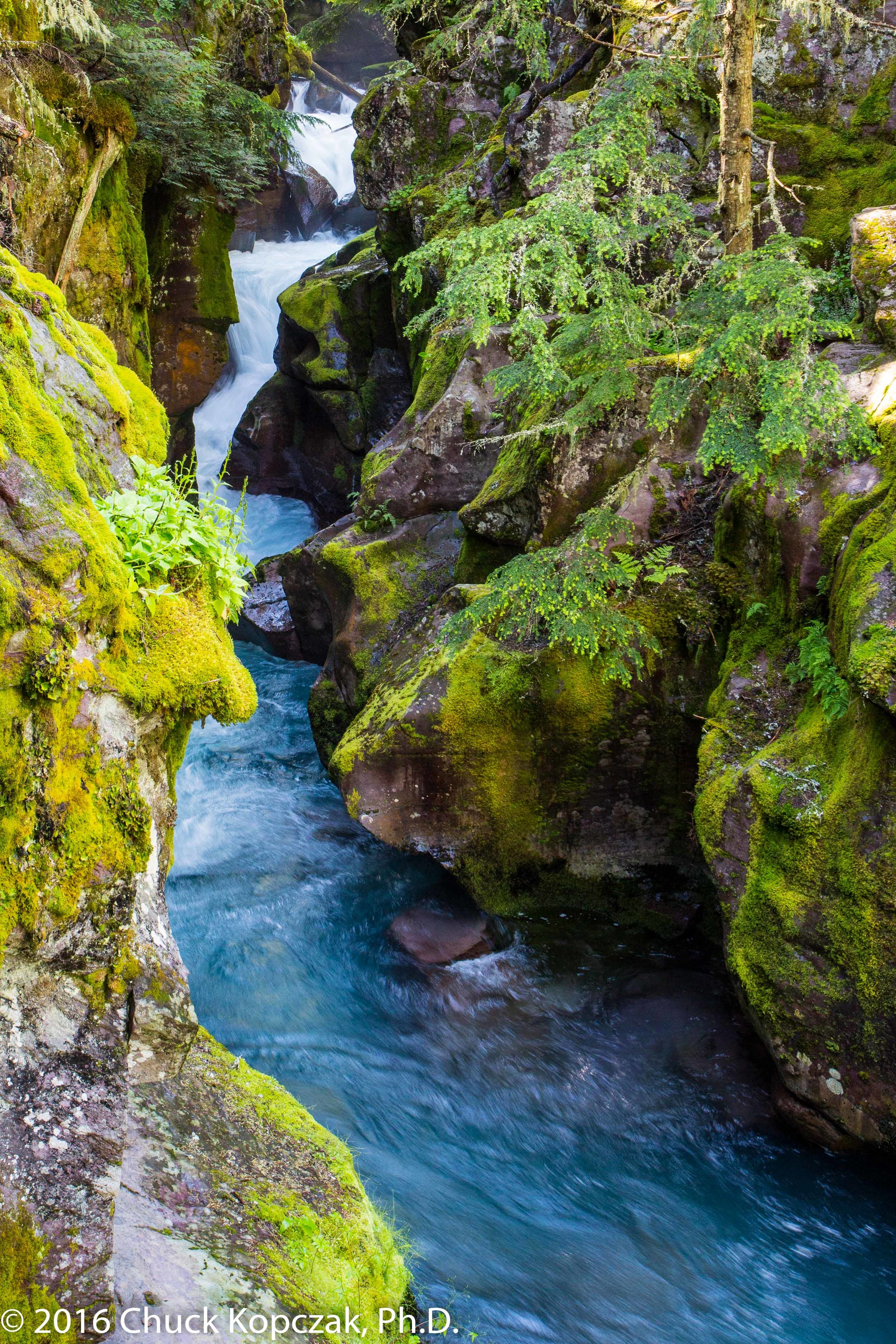 Avalanche Creek flows down from Avalanche Lake in Glacier National Park in Montana.