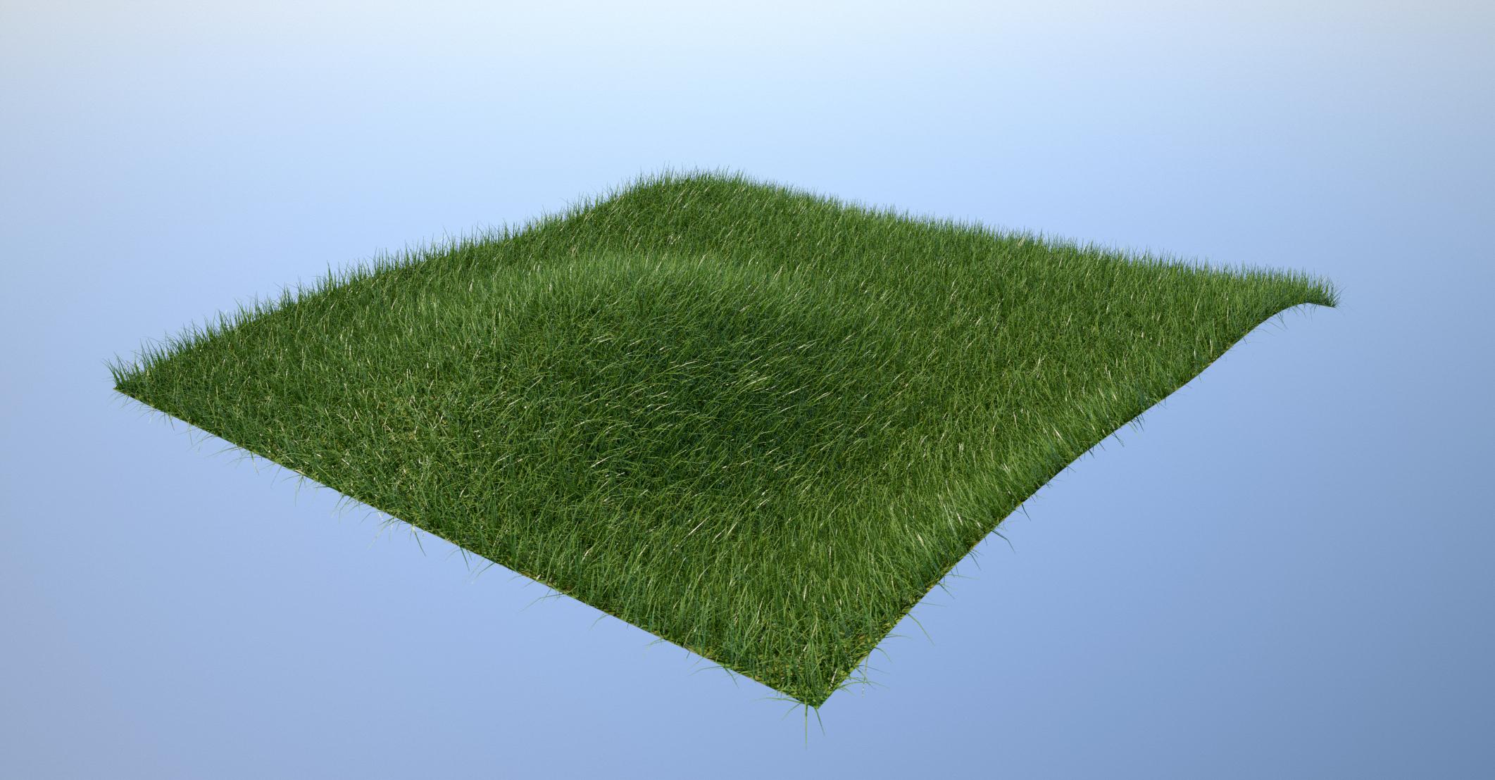 Overgrown Lawn on Nurbs Surface