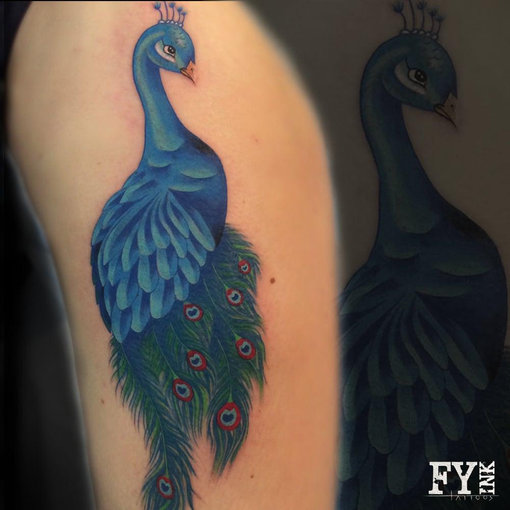 PeacockNikkiFYInk.jpg