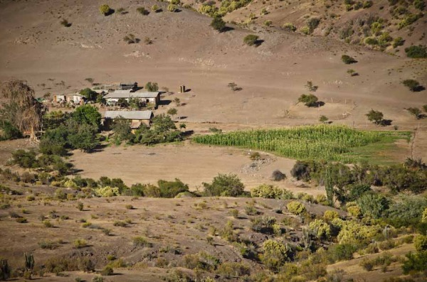 Ranch in Northern Chile near Tololo Observatory