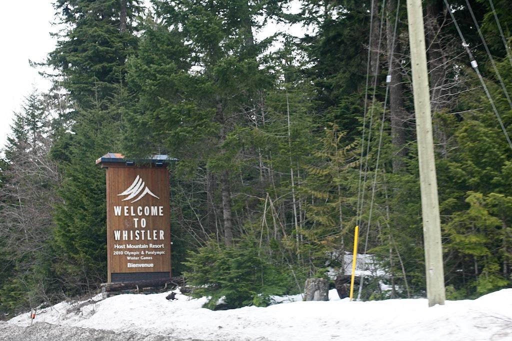 whistler skiing 3.jpg