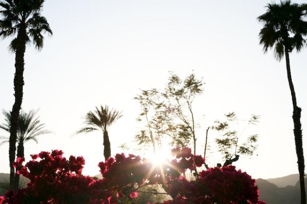 rancho las palmas.jpg