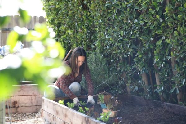 gardening during.jpg