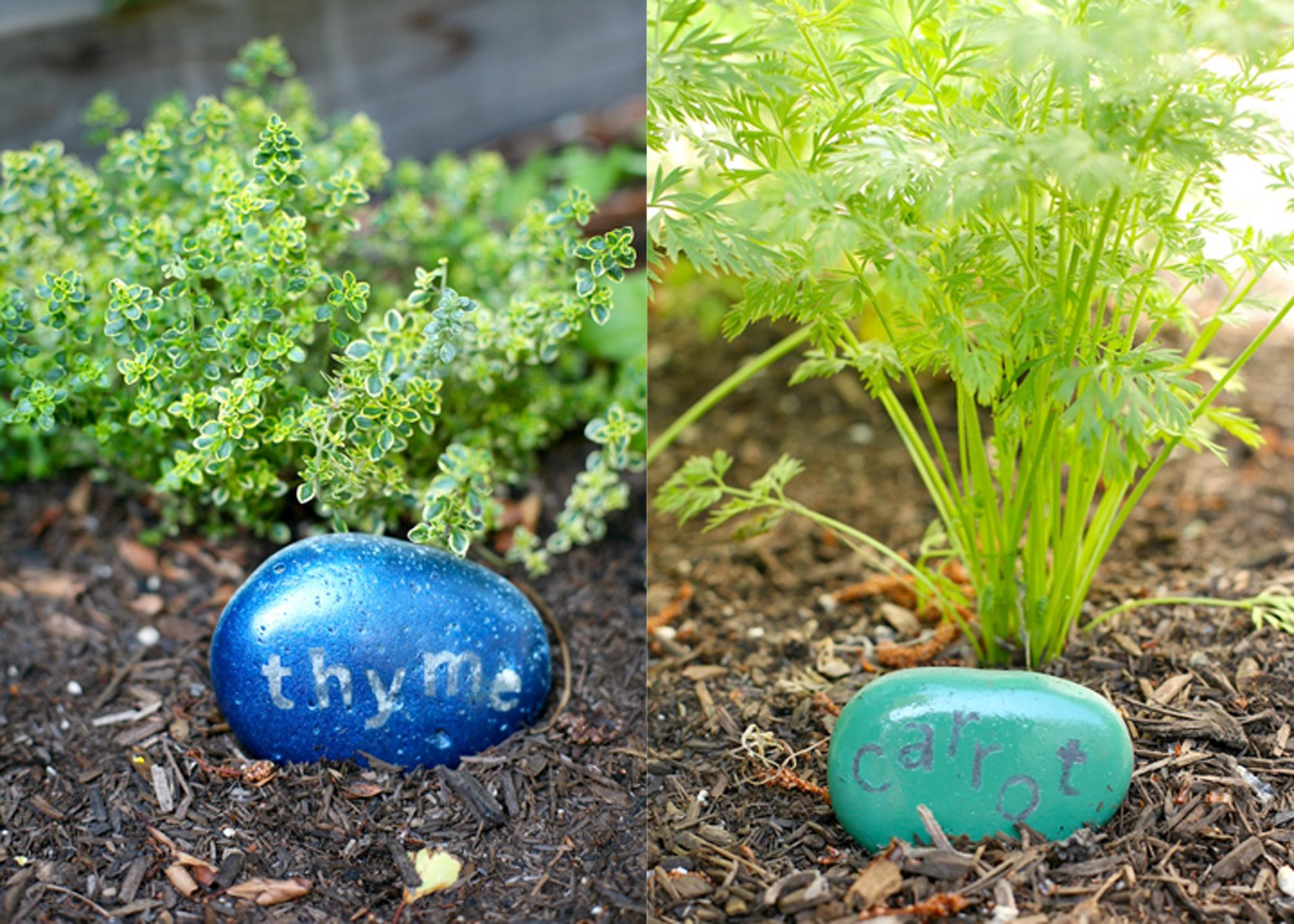 vegetable labels.jpg