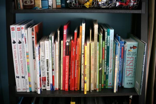 kids books organization.jpg