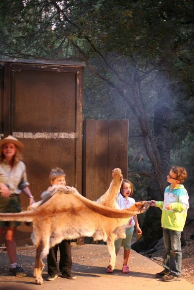 palomar camping 10.jpg