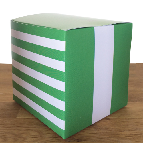 "YOU CHOSE STRIPES GREEN 4"" x 4"" x 4"""