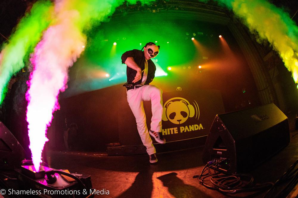 The White Panda @ The Regency Ballroom: December 2015
