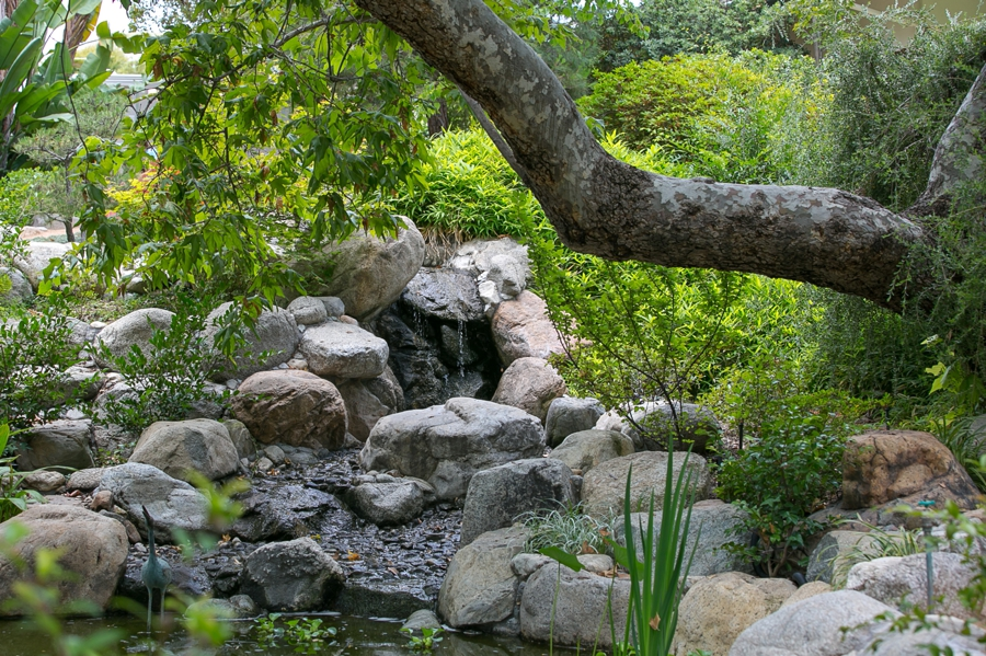 Storrier-Stearns Japanese Garden PASADENA WEDDING PHOTOGRAPHER CHRIS HOLT PHOTOGRAPHY_014.jpg