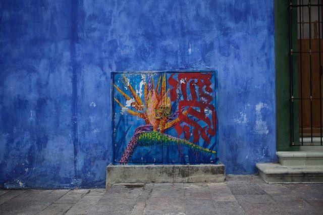 Street Details and Stock Pots, Oaxaca, 2019 . . . #streetart #wastewarrior #fruitskinsyrups #pineapplecaramel #blueoaxaca #culinaryresearch