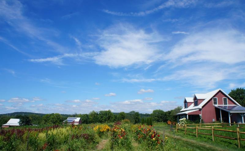 Explore the farm! Bring a picnic! Take a walk and visit the animals!