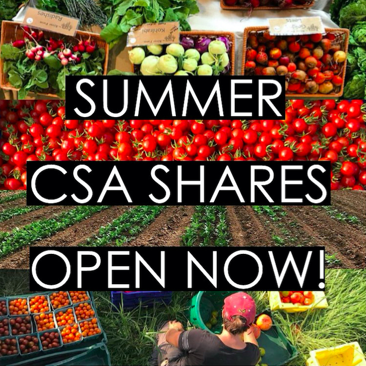 Summer CSA Shares pic.jpg
