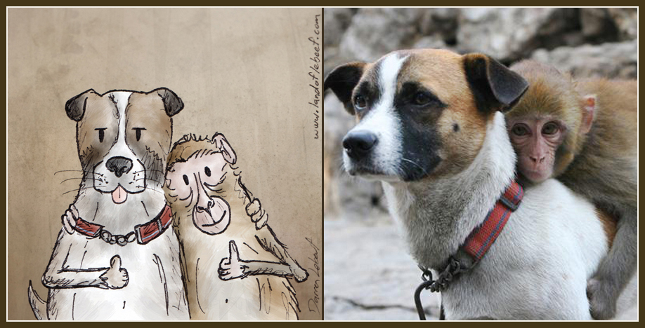 Unlikely animal best friends - dog and monkey. The Land of Le Beef comic strip, by Darren Lebeuf