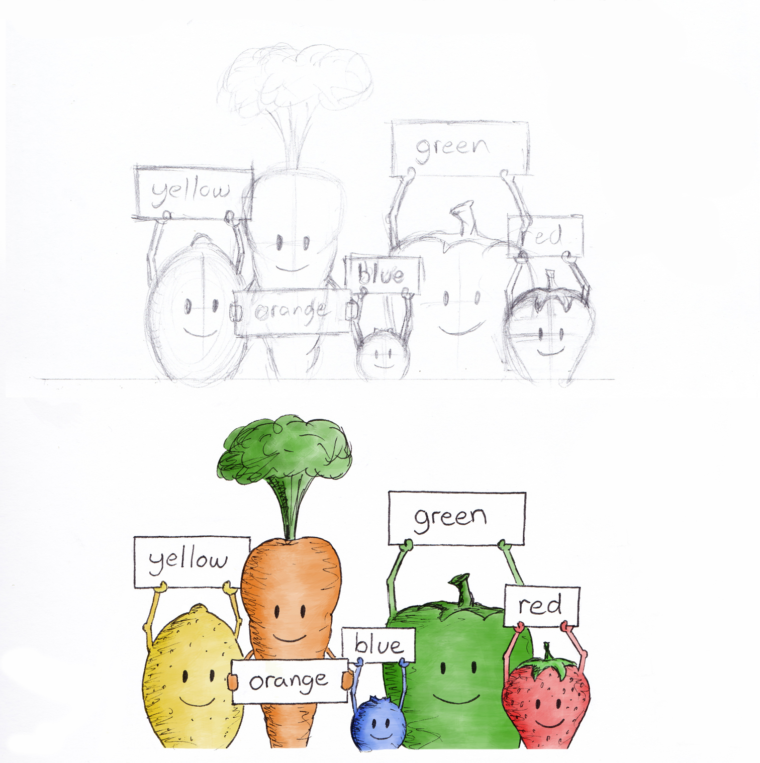 fruits and vegetables - rough sketch and coloured draft