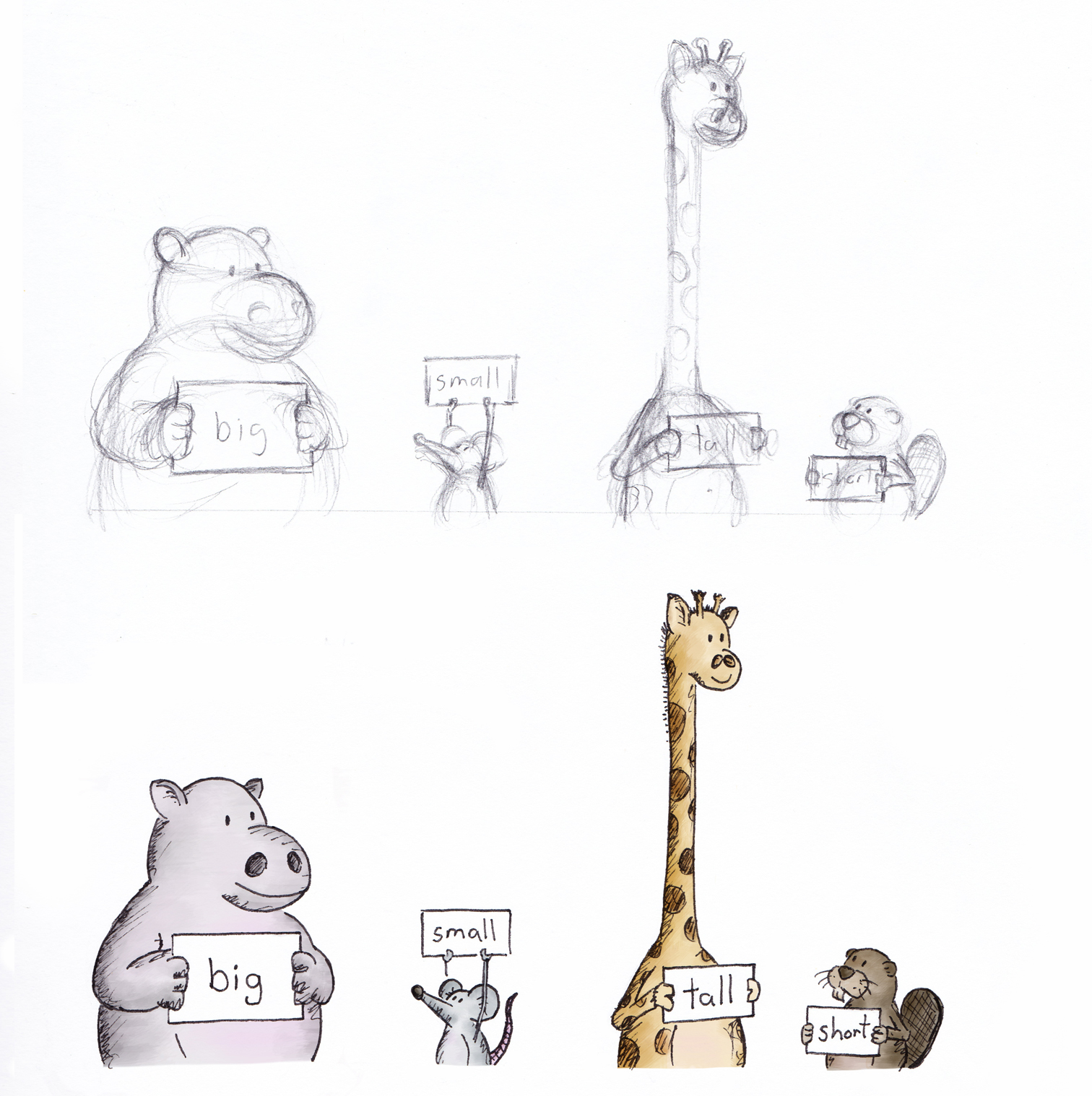 hippo, mouse, giraffe, beaver - rough sketch and coloured draft