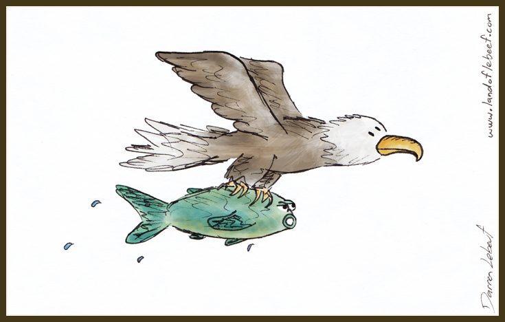 eagle and fish, together.