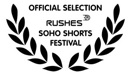 official_selection_s.jpg