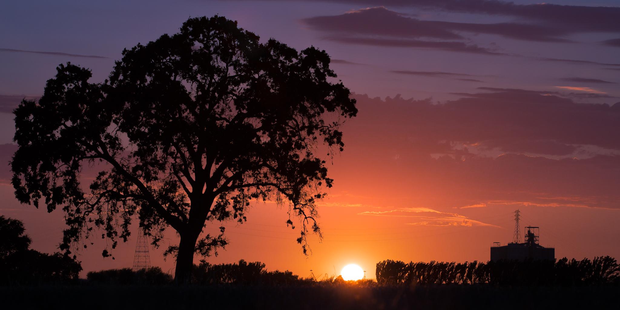 West Sac Sunset.jpg