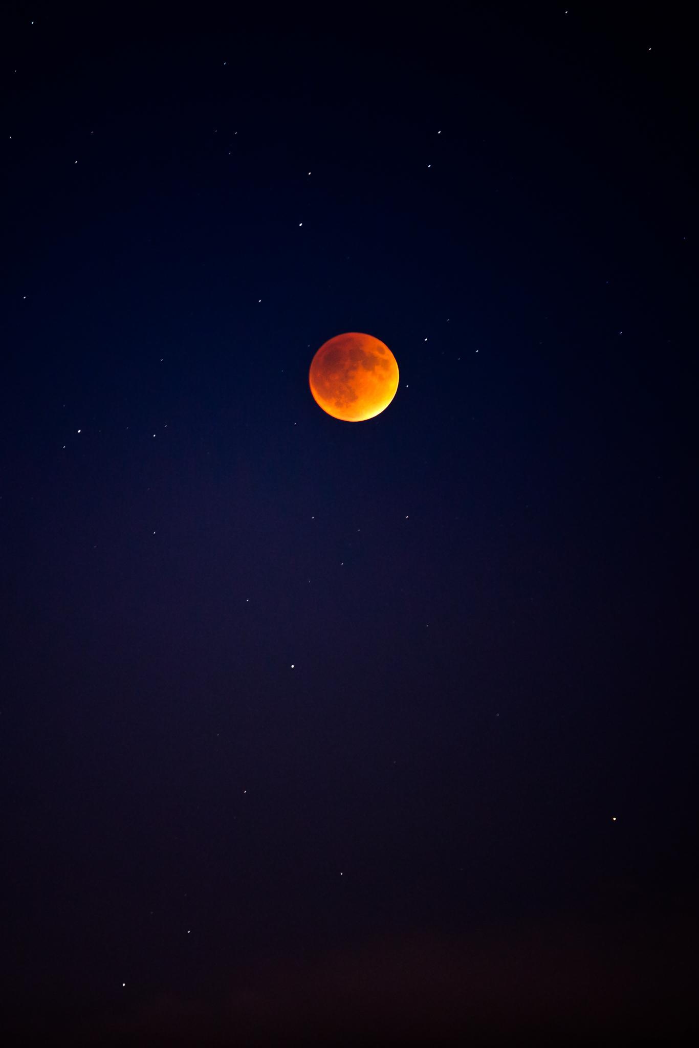 Super Blood Moon - 9-15.jpg