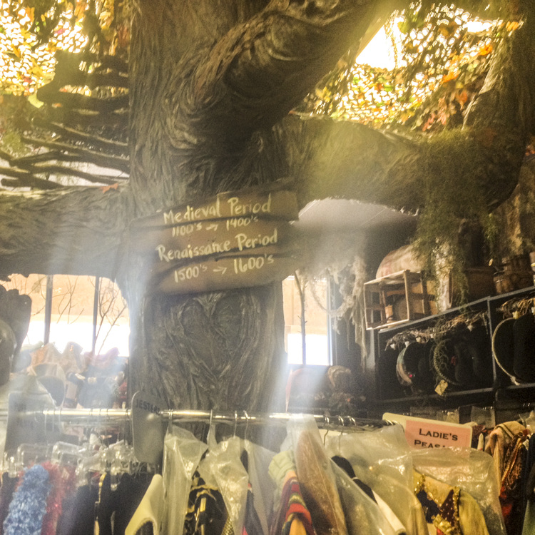 The giant tree in the middle of Rose Costumes...