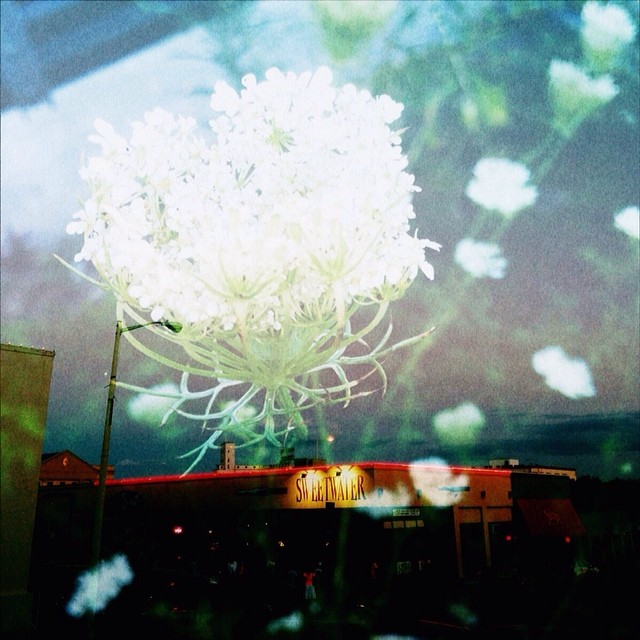 Double exposure photo featuring Sweetwater and a flower from  Shaina Sheaff.