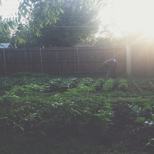 It's farming season, y'all.Photo by Jade Wintersee Chessman.