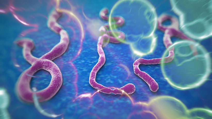 This is Ebola.