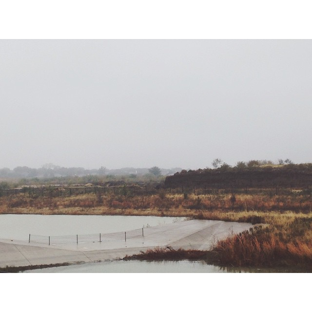 Foggy landscapes part 1 with @samnoel__.