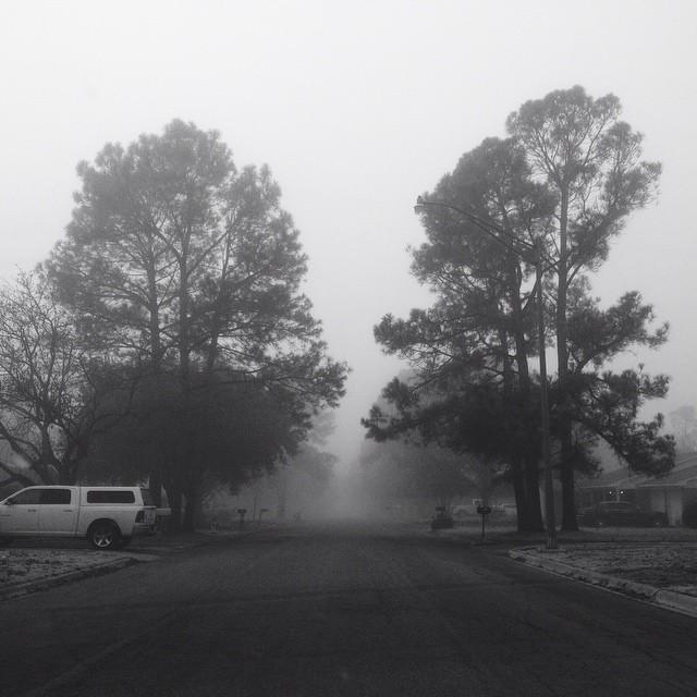 Black and white fog.