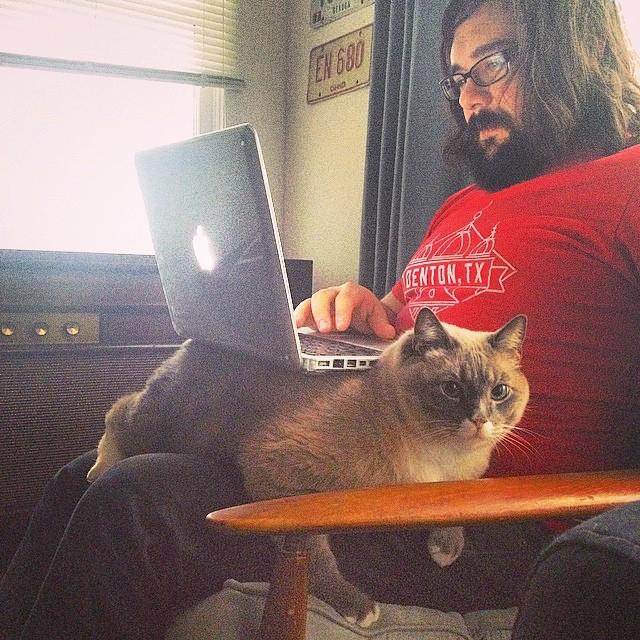 Things fat cats do. @laurahdrapac @catsofdenton