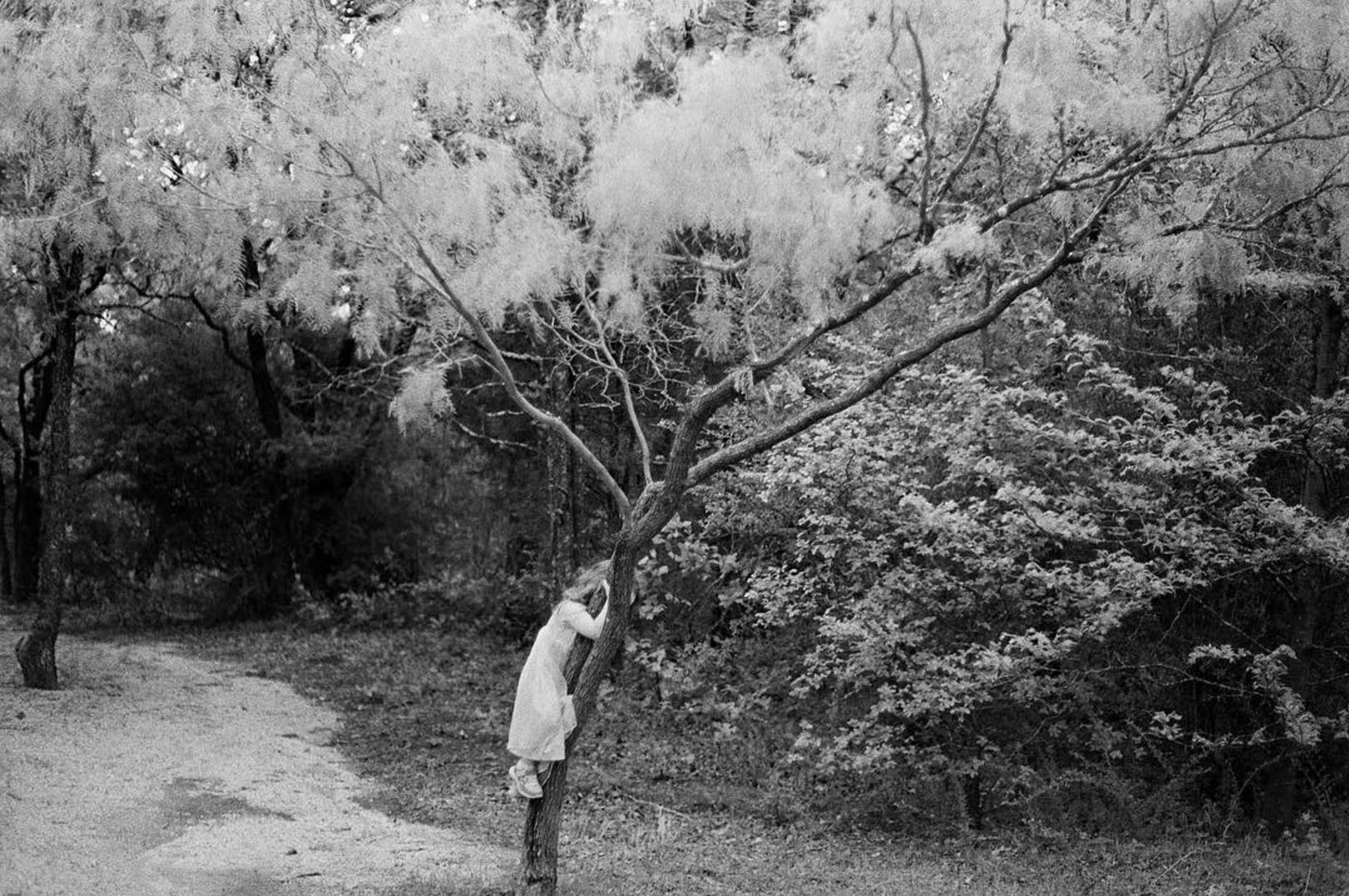 @haleyhomestead and some tree climbing.