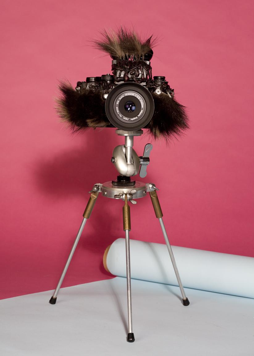 Fur Cam-187.jpg