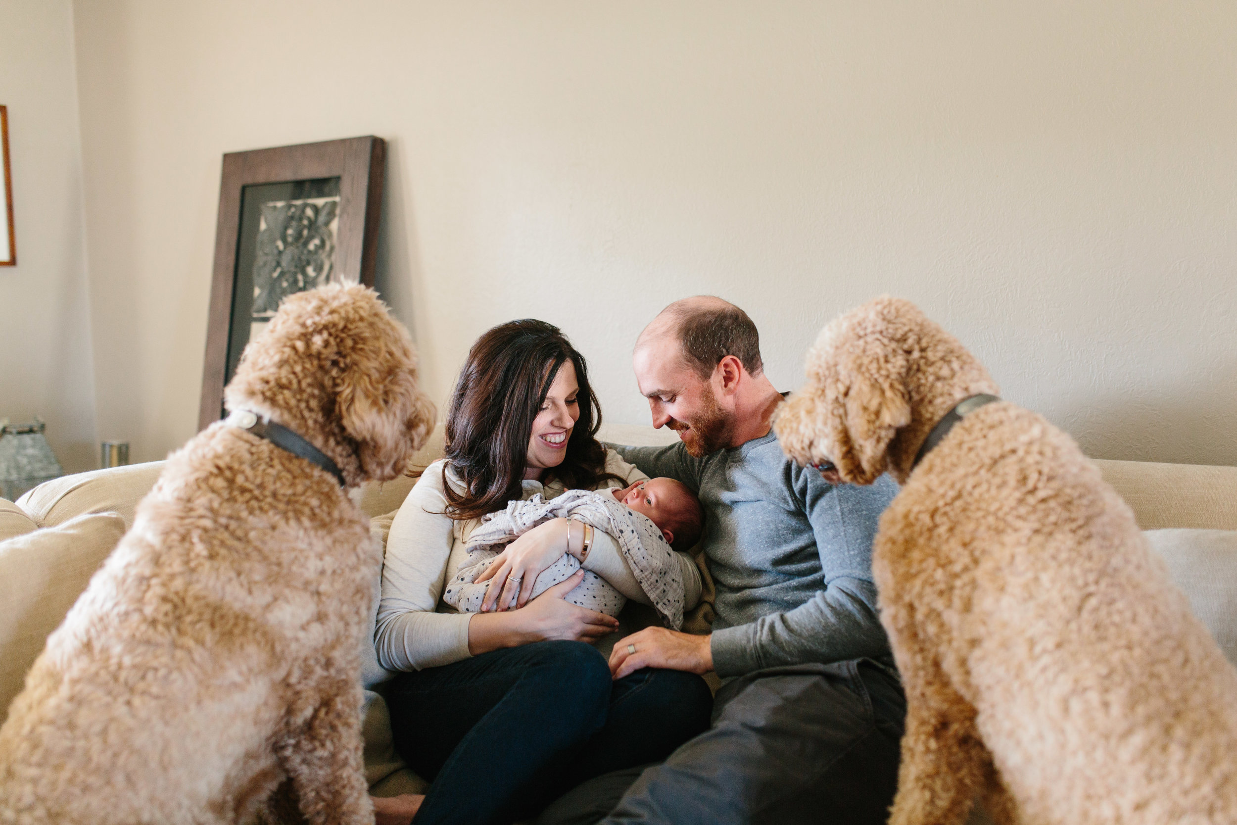 GoldenDoodles_Baby_Girl_Documentary_Photograhy_at_home.JPG