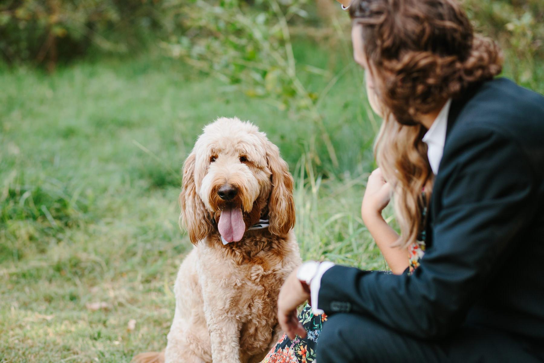 dog_family_photography_oklahoma_fall_outfit_inspiration_natural.JPG
