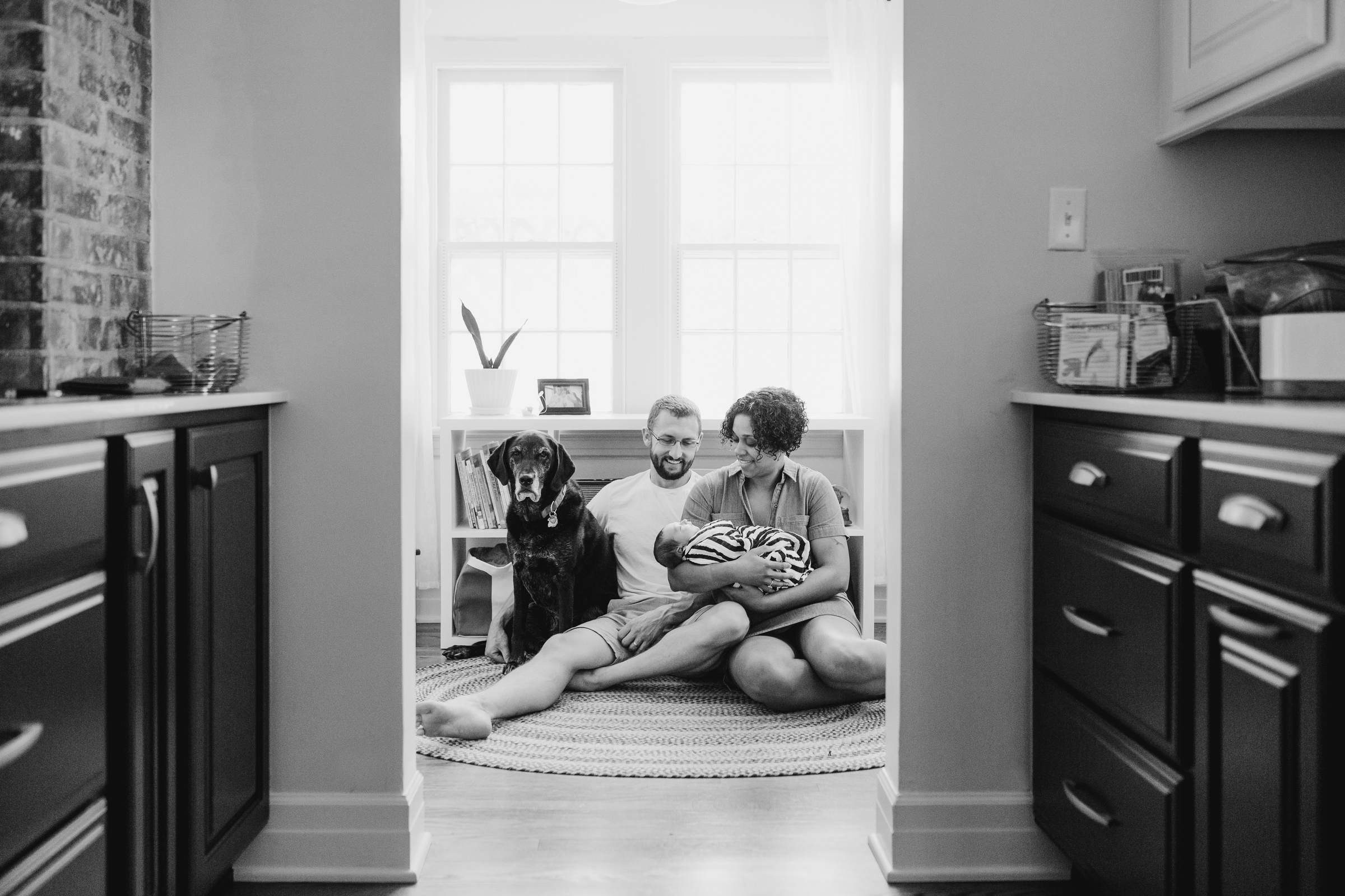 family_photos_dog_lab_in_home_lifestyle_newborn_natural.JPG