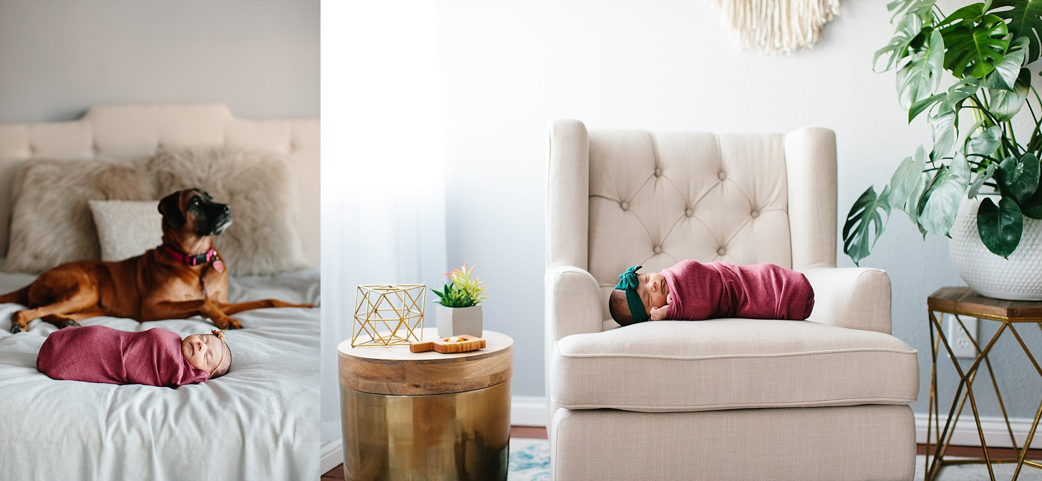 photographer-okc-newborn-lifestyle-studio-moore-oklahoma-baby-girl.jpg