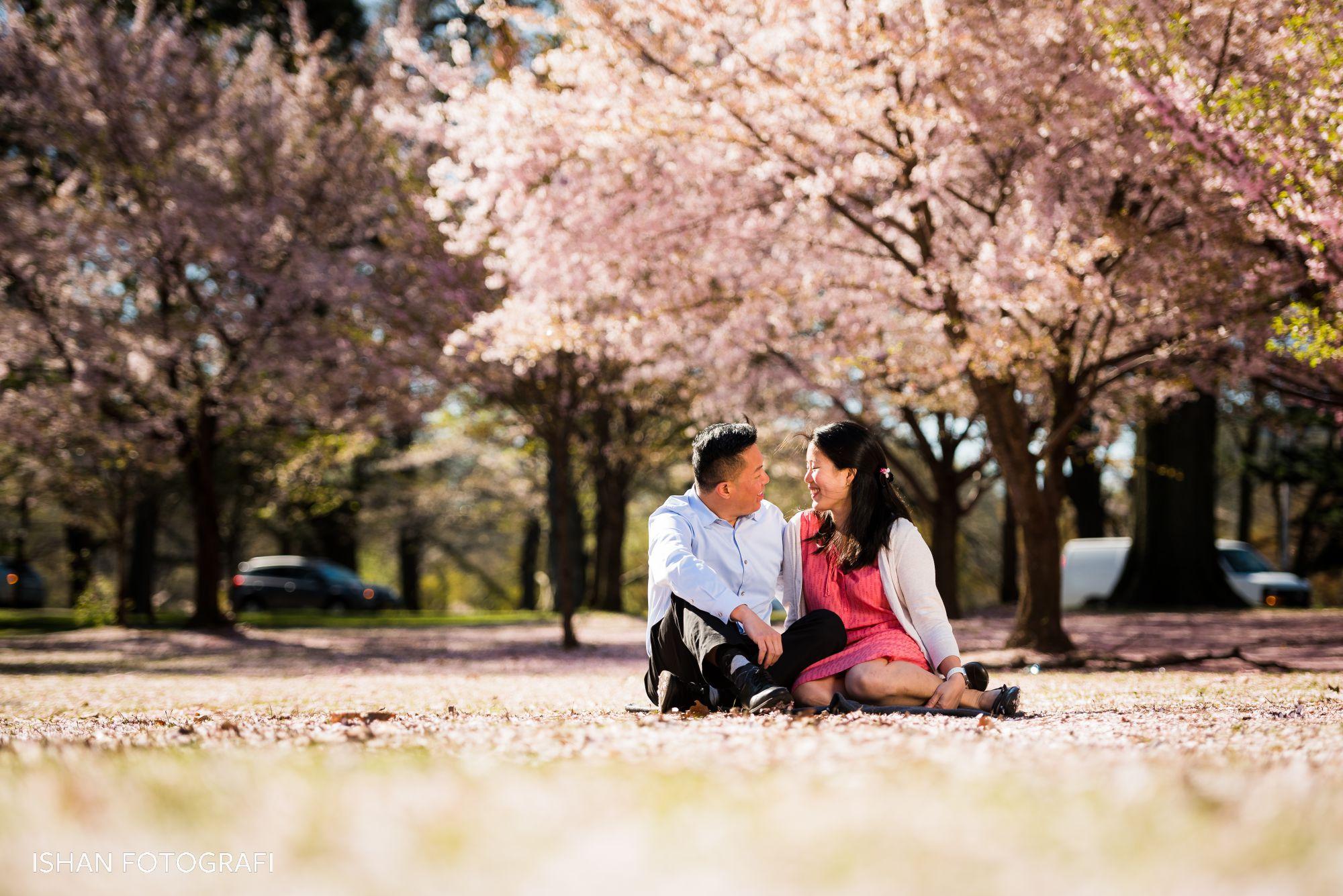 cherry-blossoms-engagement-photos-branch-brook-park-NJ