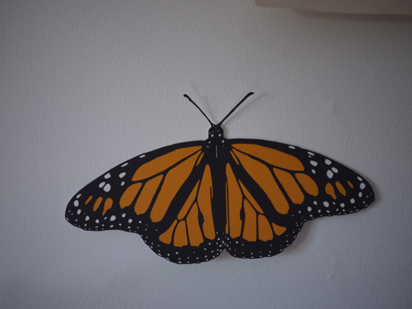 monarch_butterfly_cut_5.jpg