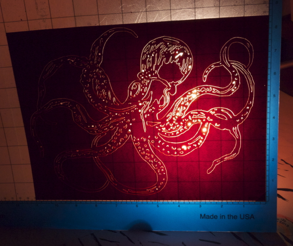 Octopus_2_1.jpg