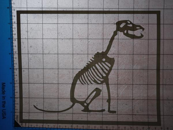 dog_skeleton_2.jpg