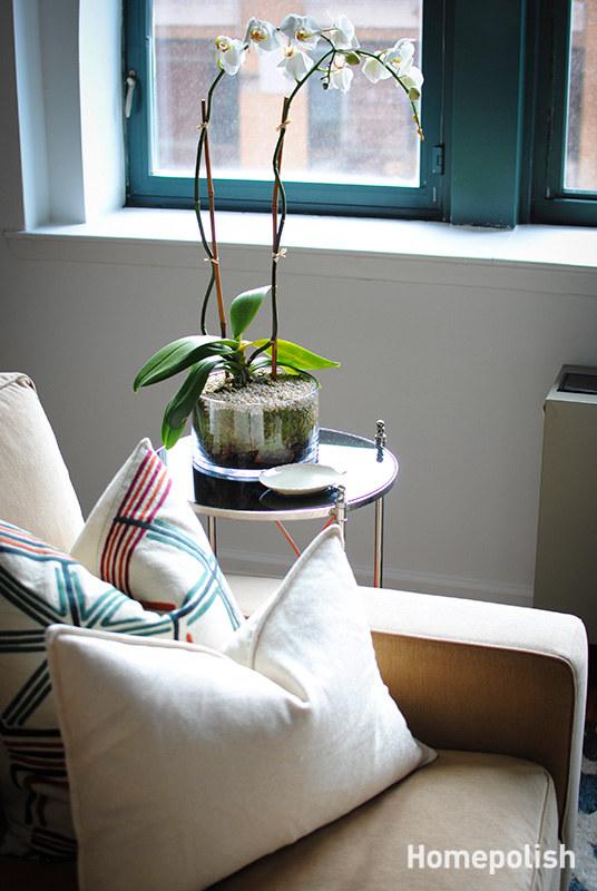 Homepolish-home_design-la-2ea3eba3.jpg