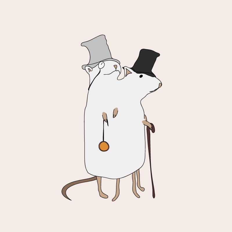 Dapper Siamese Rats