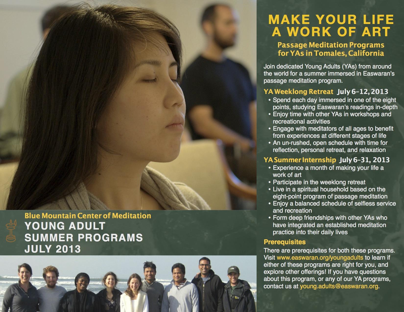 YA Summer Programs 2013.jpg