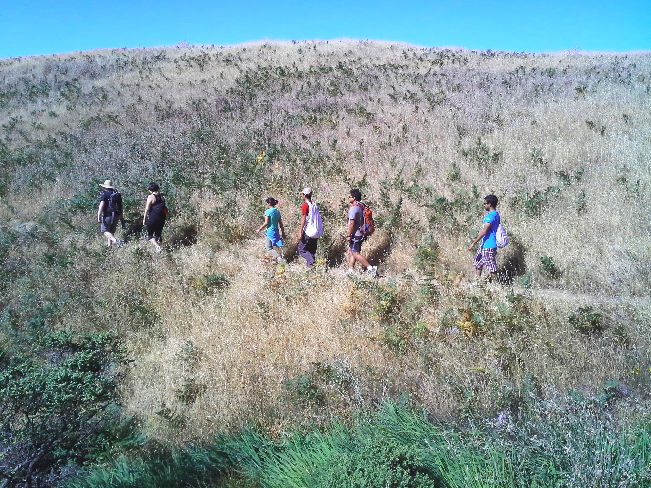 YA-Hike-Hills.jpg