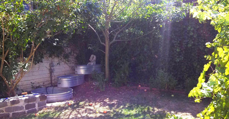 YA-Backyard-Picnic.jpg